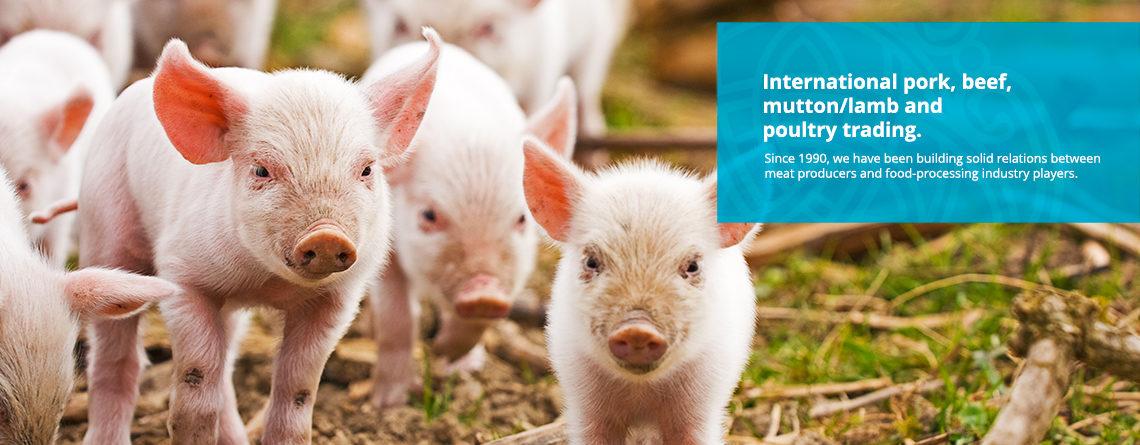pork-beef-lamb-trading