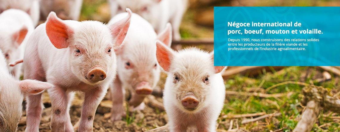 Négoce de viande de porc
